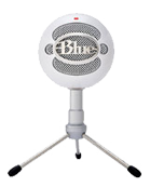 blue snowball is a good cheap streaming mic